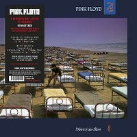 Cover Pink Floyd - A Momentary Lapse Of Reason
