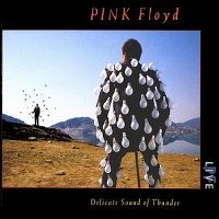 Cover Pink Floyd - Delicate Sound Of Thunder