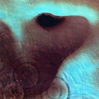 Cover Pink Floyd - Meddle