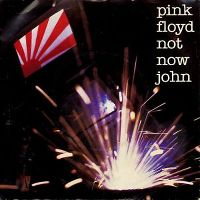 Cover Pink Floyd - Not Now John