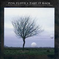Cover Pink Floyd - Take It Back