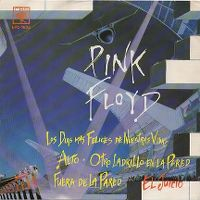 Cover Pink Floyd - The Happiest Days Of Our Lives