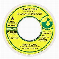 Cover Pink Floyd - Us And Them