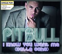 Cover Pitbull - I Know You Want Me (Calle Ocho)