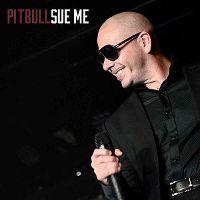 Cover Pitbull - Sue Me
