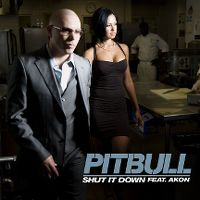 Cover Pitbull feat. Akon - Shut It Down