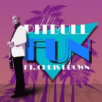 Cover Pitbull feat. Chris Brown - Fun