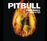 Cover Pitbull feat. John Ryan - Fireball
