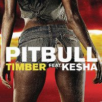 Cover Pitbull feat. Ke$ha - Timber