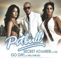 Cover Pitbull feat. Lloyd - Secret Admirer