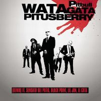 Cover Pitbull feat. Sensato Del Patio, Black Point, El Cata & Lil Jon - Watagatapitusberry