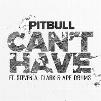 Cover Pitbull feat. Steven A. Clark & Ape Drums - Can't Have