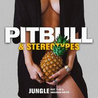 Cover Pitbull & Stereotypes feat. E-40 & Abraham Mateo - Jungle