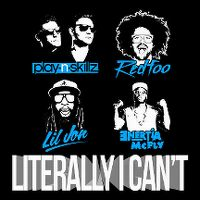 Cover Play-N-Skillz feat. Redfoo, Lil Jon & Enertia McFly - Literally I Can't