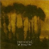Cover Primordial - A Journey's End