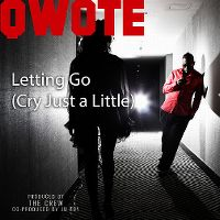 Cover Qwote feat. Mr. Worldwide - Letting Go (Cry Just A Little)