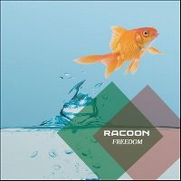 Cover Racoon - Freedom