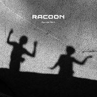 Cover Racoon - Fun We Had