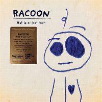 Cover Racoon - Het is al laat toch
