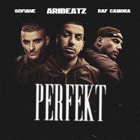 Cover RAF Camora & AriBeatz feat. Sofiane - Perfekt