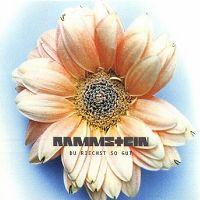 Cover Rammstein - Du riechst so gut
