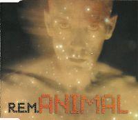 Cover R.E.M. - Animal