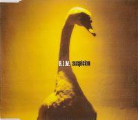 Cover R.E.M. - Suspicion