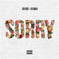 Cover Rick Ross feat. Chris Brown - Sorry