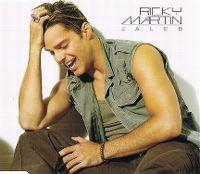 Cover Ricky Martin - Jaleo
