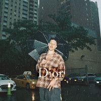 Cover RIN - Dior 2001
