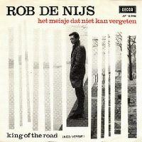 Cover Rob de Nijs - Het meisje dat niet kan vergeten