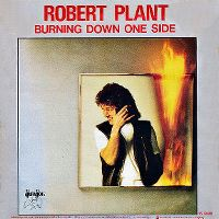 Cover Robert Plant - Burning Down One Side