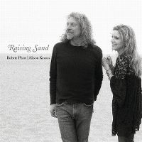 Cover Robert Plant & Alison Krauss - Raising Sand