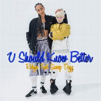 Cover Robyn feat. Snoop Dogg - U Should Know Better