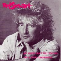 Cover Rod Stewart - My Heart Can't Tell You No