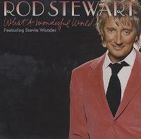 Cover Rod Stewart feat. Stevie Wonder - What A Wonderful World