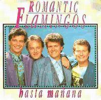Cover Romantic Flamingos - Hasta mañana