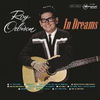 Cover Roy Orbison - In Dreams