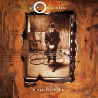 Cover Roy Orbison - You Got It