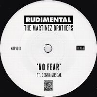 Cover Rudimental & The Martinez Brothers feat. Donna Missal - No Fear