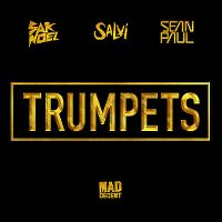 Cover Sak Noel & Salvi feat. Sean Paul - Trumpets