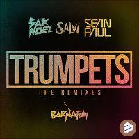 Cover Sak Noel & Salvi feat. Sean Paul - Trumpets