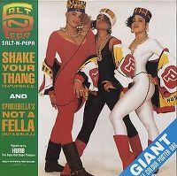Cover Salt-N-Pepa feat. E.U. - Shake Your Thang