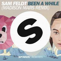 Cover Sam Feldt - Been A While