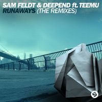 Cover Sam Feldt & Deepend feat. Teemu - Runaways