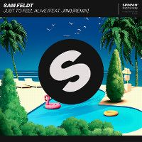 Cover Sam Feldt feat. JRM - Just To Feel Alive (Remix)