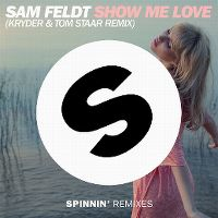 Cover Sam Feldt feat. Kimberly Anne - Show Me Love