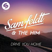 Cover Sam Feldt & The Him feat. The Donnies The Amys - Drive You Home
