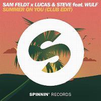 Cover Sam Feldt x Lucas & Steve feat. Wulf - Summer On You