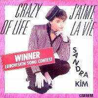 Cover Sandra Kim - Crazy Of Life